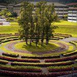 USB ganó premio al mejor trabajo de bioingeniería en Andescon 2020